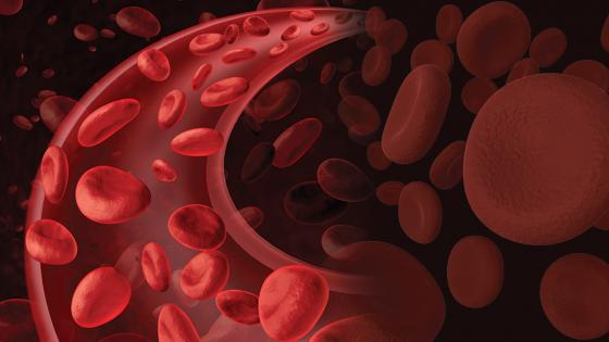 Women More Likely To Experience Blood Vessel Constriction In